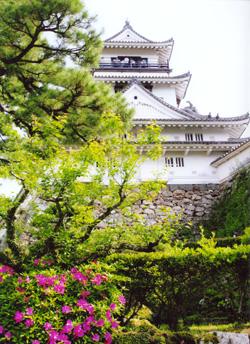 下から見た高知城