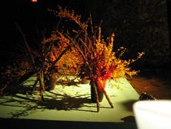 高知城を彩った生け花オブジェ