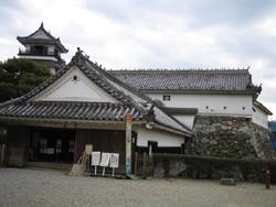 ハトと高知城